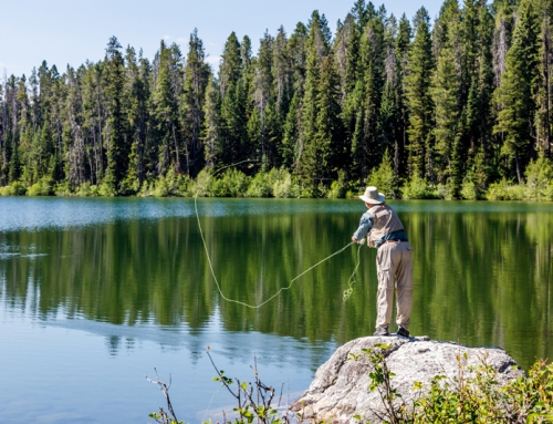 Can You Fly Fish in a Pond?